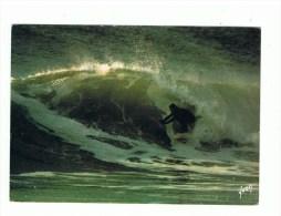 SURF: Edit: Yvon N° 81 (neuve) - Autres