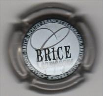 CAPSULE DE CHAMPAGNE  BRICE N° 10 CONTOUR METAL  COTE 1.50 EURO - Sonstige