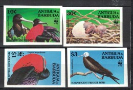 Antigua. Frigate Birds. WWF. 1994. 4 MNH Imperforeted Stamps. Scott Not Listed. - Albatrosse & Sturmvögel