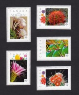 """[2] CACTUS FLOWERS  Set Of 5 Personalized Picture Postage Unused Stamps, """"P""""- Rate. Canada 2015 [p15/2ct52] - Cactusses"""