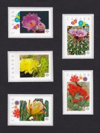 """[1]  CACTUS FLOWERS  Set Of 5 Personalized Picture Postage Unused Stamps, """"P""""- Rate. Canada 2015 [p15/2ct51] - Cactusses"""