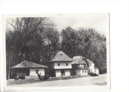 12468 - Praha Slovanska Zemedelska Vystava 1948 V Praze (Format 10X15) - Tchéquie