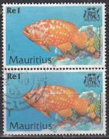 Mauritius, 2000 - 1r Cephalopholis Sonnerati, Coppia - Nr.911 Usato° - Mauritius (1968-...)