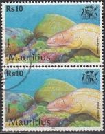 Mauritius, 2000 - 10r Siderea Grisea, Coppia - Nr.919 Usato° - Mauritius (1968-...)
