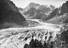 B12102 Chamonix -  La Mer De Glace - Chamonix-Mont-Blanc