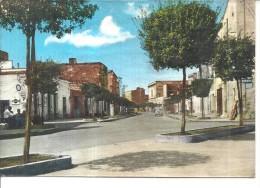 LEVERANO VIA  SINDACO CARRACIOLO,,PANORAMICA.VIAGGIATA --1958-.-E418 - Lecce