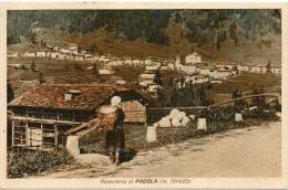VENETO-BELLUNO-PADOLA CONTADINA CHE OSSERVA IL PANORAMA DI PADOLA ANNI 30 - Italia
