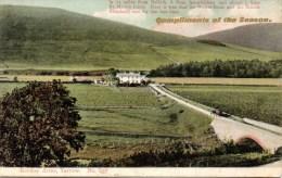 GORDON ARMS - YARROW - NR. SELKIRK - SCOTLAND - LOCAL PHOTOGRAPHER - Selkirkshire