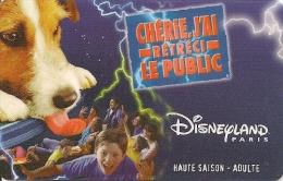 PASS--DISNEY-1999-DISNEYLAND-P ARIS-CHERIE J AI RETRECI-V° SPEOS-99/06/HOA -TBE - France