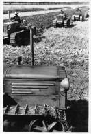 """01527 """"TRATTORI FIAT OCI 40 HP BOGHETTO"""" AGRICOLTURA. ANIMATA. FOTOGRAFIA ORIGINALE. - Mestieri"""