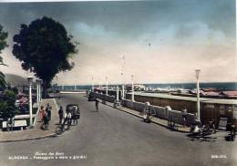 Albenga - Passeggiata A Mare E Giardini - 506-179 - Formato Grande Viaggiata - Savona