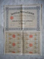 CORSE, MINES DE CAVALLO,  ACTION DE 100 FRANCS DE 1924, BEL ETAT - Bergbau