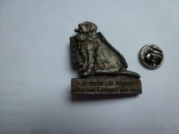 Beau Pin´s En Relief , Chien Saint Bernard , SNPA , Ile Lacroix  , Rouen - Animaux