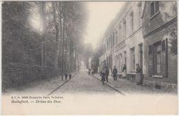 25035g  DREVE Du DUC - Boitsfort - 1908 - Watermael-Boitsfort - Watermaal-Bosvoorde