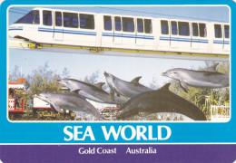 SEA WORLD , Gold Coast , Australia , 70-80s ; Mono-rail Train & Dolphins - Gold Coast