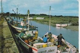 MESQUER (44-Loire-Atlantique), Le Port, Chalutiers, Pêcheurs, Ed. Chapeau 1982 - Mesquer Quimiac