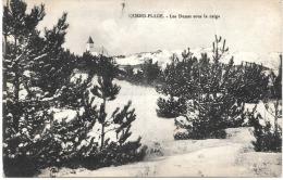 Quend Plage Les Dunes Sous La Neige - Sonstige Gemeinden