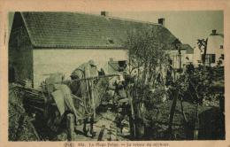 BELGIQUE - La Plage Belge, N°82a - Le Retour Du Pêcheur. - Fishing