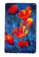 Russia  Vnukovo Flowers  Poppies 100 Units 30.06.2007 - Russia