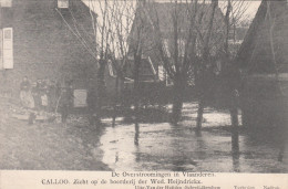 Ramp Der Overstroomingen Van 12 Maart 1906, Calloo Zicht Op De Boerderij Der Wed. Heijndrickx  (pk18540) - Beveren-Waas