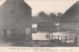 Ramp Der Overstroomingen Van 12 Maart 1906, Calloo De Boerderij Van TH Wilsens Onder Water  (pk18541) - Beveren-Waas