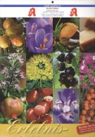 Weinheim: Kalender 2011 Erlebniswelt Der Düfte (mit Geruch) Blumen Obst Mult-Zentrum Apotheke - Calendars