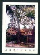 SURINAM  -  Fort Zeelandia  Used Postcard As Scans - Surinam