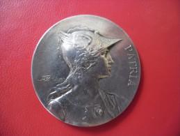 MEDAILLE PATRIA En Bronze Argenté Signé Rivet 41 Gr. Et 45 Mm Non Attribué De La Fin Du 19 ° Siècle - Poinçon Tranche - Professionali / Di Società