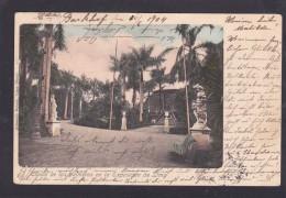 Antique Card, Ciosco de las palmeras en la Exposicion de Lima, Peru, Posted with Stamp, Y15.
