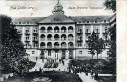 BAD GRÄFENBERG (Böhmen) - Neues Priesnitz Sanatorium, 1916 Gel.von Nieder Li ... Nach Salzburg - Böhmen Und Mähren