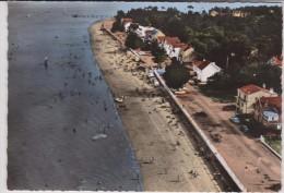 Charente  Maritime :   ILE    D '  OLERON  : Vue - Ile D'Oléron