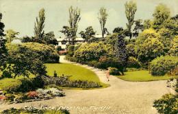 Glamorgan. Merthyr Tydfil, The Park. - Glamorgan