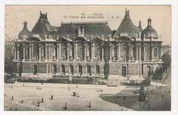 59 - Lille         Le Palais Des Beaux-Arts - Lille