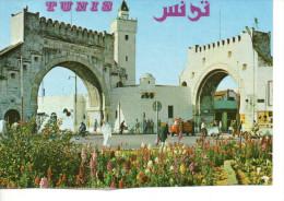 CP - PHOTO - TUNIS - BAB EL KHADHRA - - Túnez