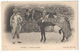TUNISIE - Cheval Et Cavalier - ND 60 - Tunisie