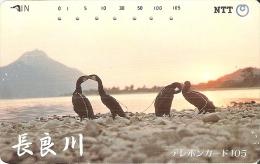 TARJETA DE JAPON DE UNOS CORMORANES DE 105 UNITS (290-326-1989) BIRD-PAJARO - Japón