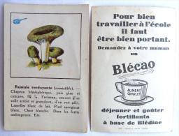 1 CHROMO Image DEJEUNER ET GOUTER BLECAO CHAMPIGNON CHAMPIGNONS - RUSSULE VERDOYANTE - Confectionery & Biscuits