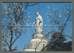 U3606 LEBANON HARISSA OUR LADY OF LEBANON (tur)