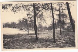 Kasterlee, Zicht Van De Weg (pk18582) - Kasterlee