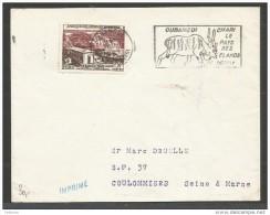 FRANCE - Oubangui - Chari Le Pays Des Elanda Derby - 1957 - Cartas