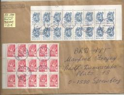 RUSSIE  1991 LETTRE SIMPLE AVEC TP  EN BLOC - Lettres & Documents