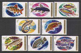 RWANDA 1973 - Faune, Poissons du Rwanda - 8 Val Neuf // Mnh