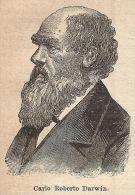 A9194 Carlo Roberto Darwin - Xilografia - Stampa Antica Del 1906 - Engraving - Prints & Engravings