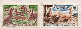 St. Pierre Et Miquelon Used Stamps - Rabbits