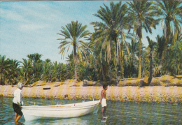 JORDAN - Aqaba - Jordanie