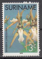 surinam    scott no  429   unused hinged     year  1975