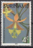 surinam    scott no  430   unused hinged     year  1975