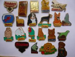 Lot 21 Pin S Friskies Different - Lots