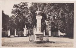 974 - ILE DE LA REUNION  - SAINT DENIS  - Entre Principale Du Jardin De L Etat - Colonial -  Buste De Bailly De Monthion - Saint Denis