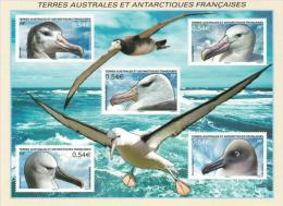 TAAF --2007 Birds MS--- MNH (**) - French Southern And Antarctic Territories (TAAF)
